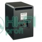 Акустическая система ACOUSTIC ENERGY AE 100 (Satin black) фото 3
