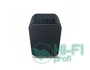 Bluesound PULSE FLEX 2i Wireless Streaming Speaker Black