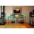 Акустическая система Monitor Audio Platinum PL 100 Rosewood фото 2