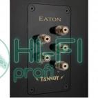 Акустическая система Tannoy EATON фото 4