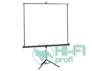 Экран Projecta Professional