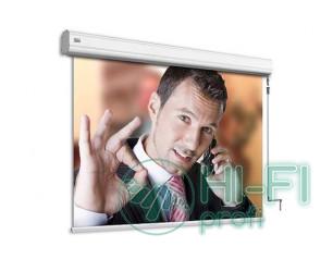 Экран Adeo ручной Professional Reference White 263x148, формат экрана 16:9, ed 6..