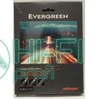 Кабель Mini-Jack AUDIOQUEST Evergreen (3,5mm-3,5mm) 1м фото 2