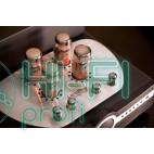 Интегральный усилитель Synthesis A40Virtus фото 3