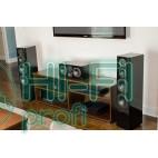 Напольная акустика SVS Prime Tower Piano Gloss фото 2